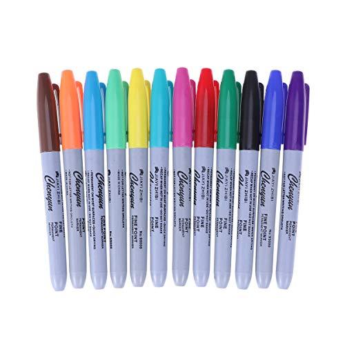 Healifty - Pennarello per tatuaggi, 12 colori, impermeabile, con scrittura, pennarello sottile e regolare per tatuaggi
